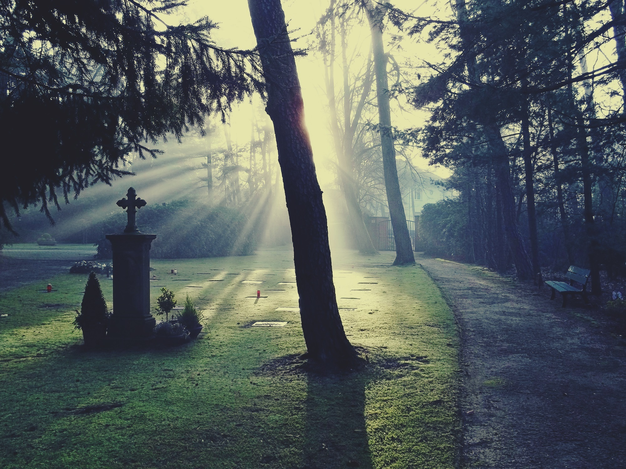 cemetery 883417