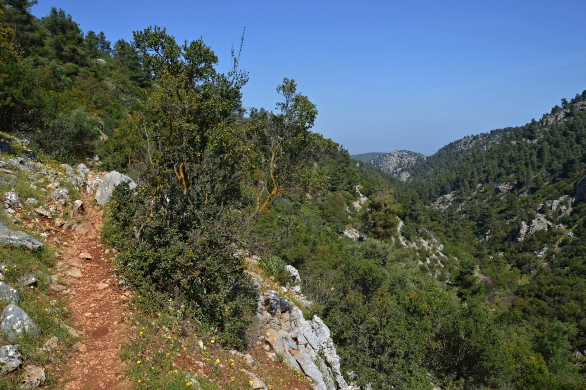 The final streatch befor reaching Agia Marina is the most striking.