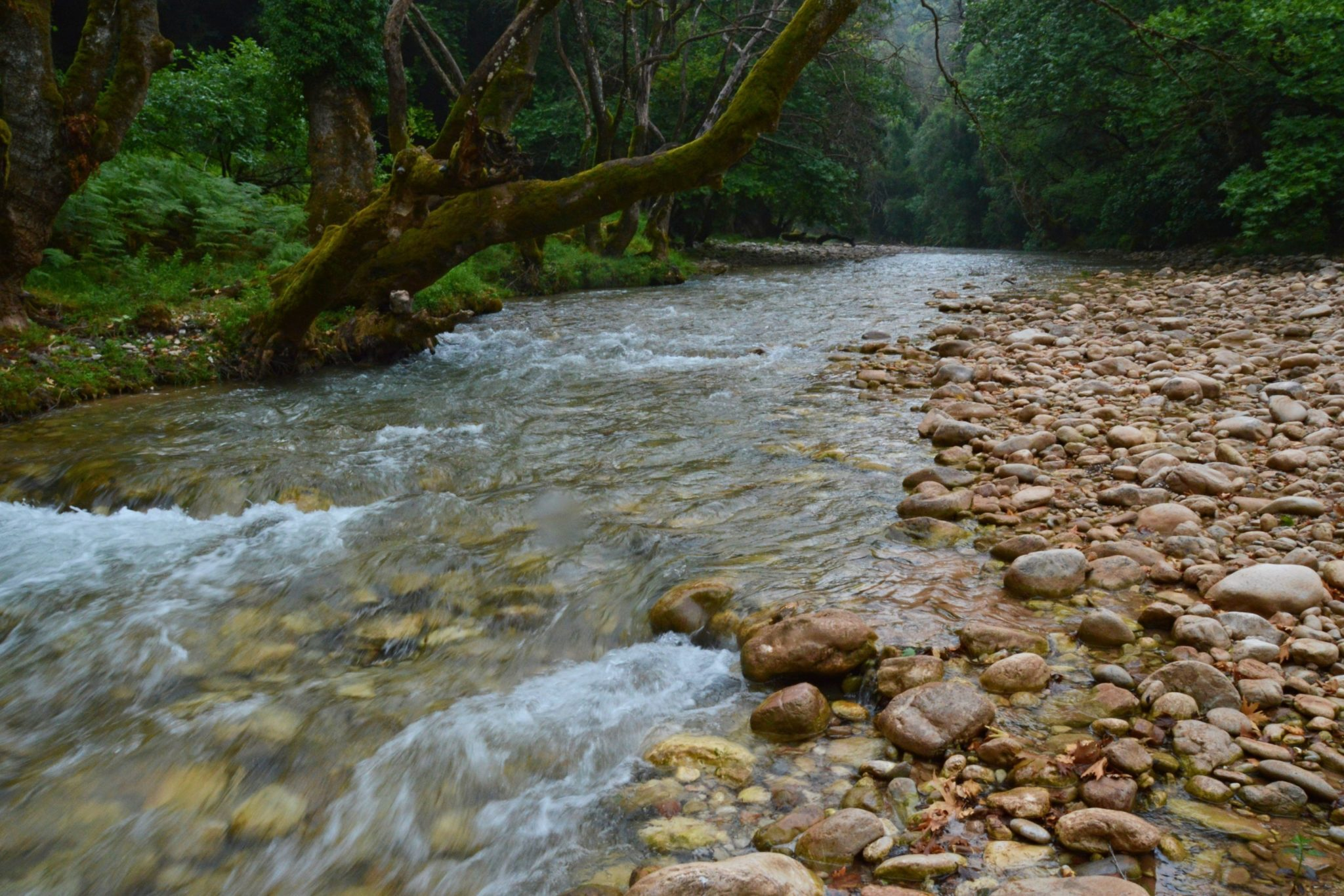 Erymanthos river on the borders of Ilia and Arcadia, Peloponnese, Greece