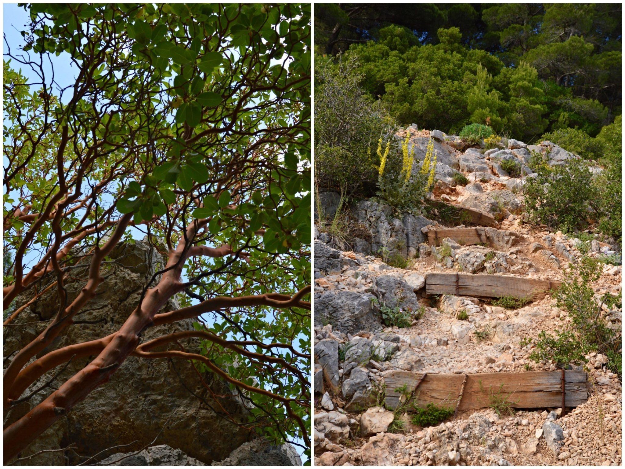 Hiking to Mpafi Refuge at Mount Parnitha, Greece