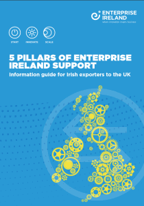 5 Pillars of Enterprise Ireland Suppor