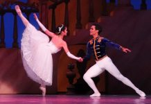 Cinderella Christmas Fantasia