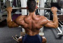 Full body workout - 3x week