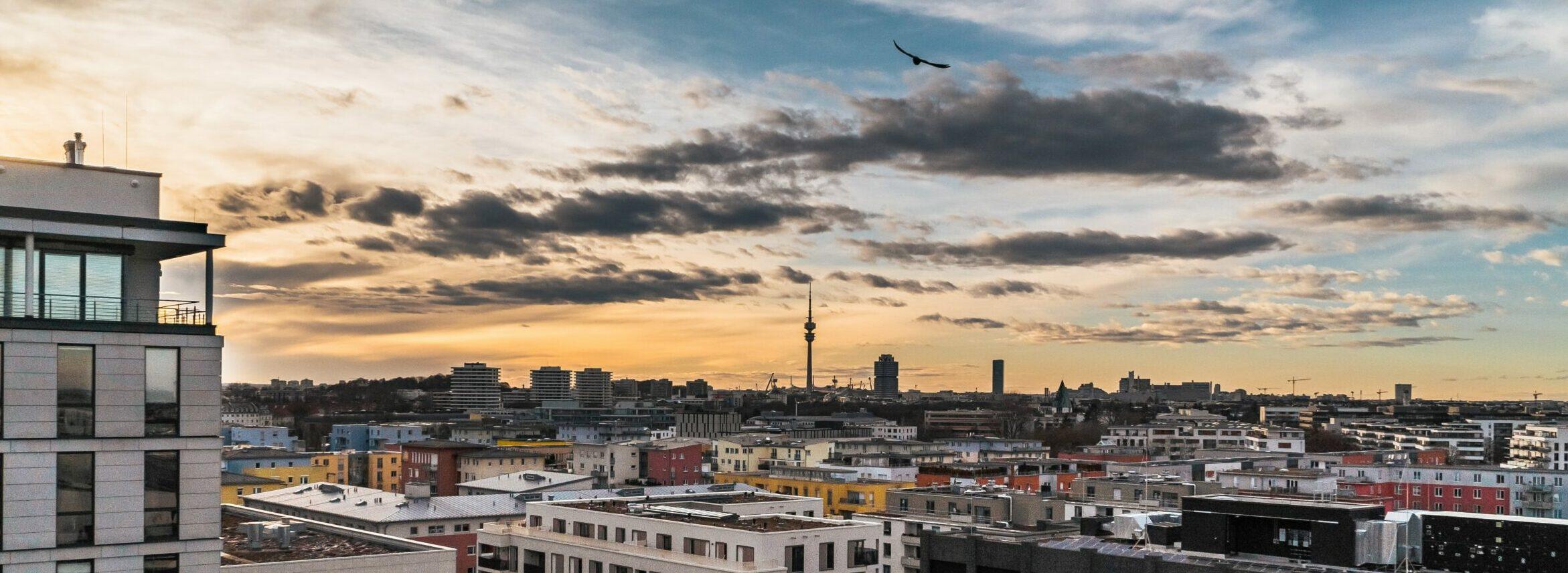 Munich UX Community Photo by Dovi on Unsplash