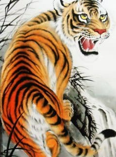 The Tiger's Whisker Story