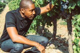 Donae Burston entre os profissionais Negros no mercado do vinho