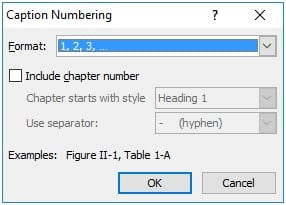 Defining-Numbering-Format
