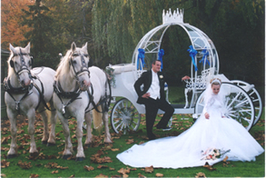 A Legendary Cinderella Wedding! 8