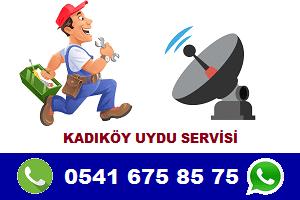 kadıköy uydu servisi digitech - Kadıköy Uydu Servisi