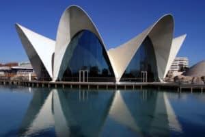 Viajes de Estudios Valencia Oceanografic