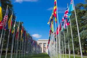 legal field globalization