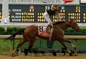 2009 Kentucky Derby Winner Mine That Bird