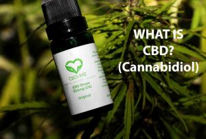 cbd oil bottle by cbd me brand with in UK hemp field 'what is cbd? cannabidiol'