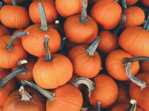 10 Reasons You Should Eat Pumpkins | Spiro Health and Wellness