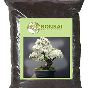 Bonsai Soil / Organic Potting Soil – 1 Kg