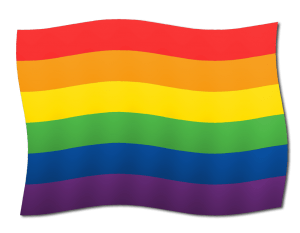 Rainbow Flag LGBTQ Owned Business
