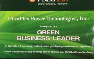 Green business leader