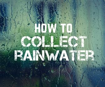 How to Quickly and Safely Collect Rainwater for Use in Survival