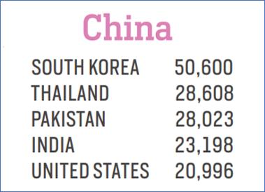 MSM Research_China Statistics