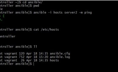 Vagrant create ansible