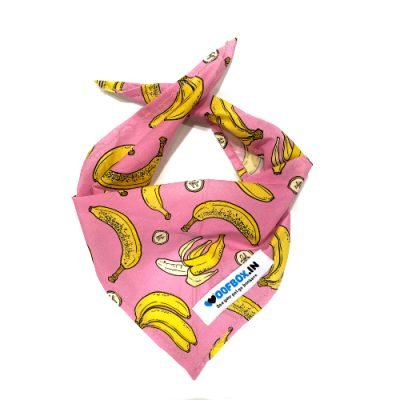 dog bandana,dog scarf, custom dog bandanas, personalized dog bandanas puppy bandanas, dog birthday bandana, dog neckerchief, dog bandana collar