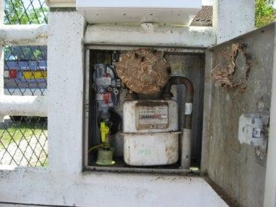 Comment se débarrasser d'un nid de guêpes dans un compteur à gaz ? SOS Nuisibles 85 intervient !