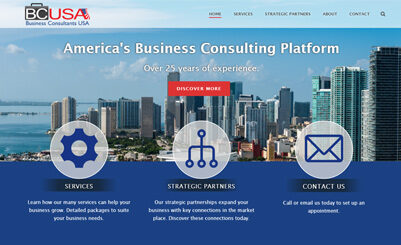 Business Consultants USA