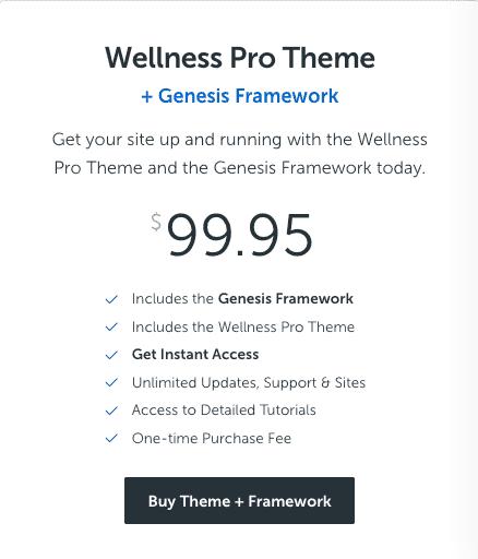 best wordpress theme for health blog
