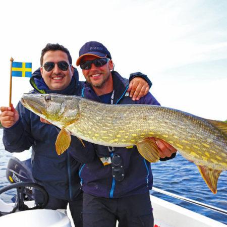Angeln in Schweden mit Angelguide Thomas Kofler