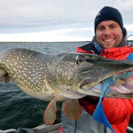 Raubfisch angeln am Bodden mit Angeguide Robert Balkow