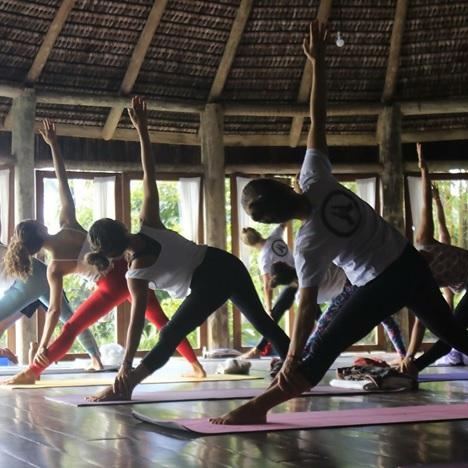 the top yoga trainings in toronto