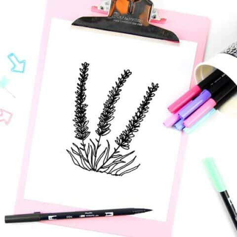 How to Draw Lavender Doodles