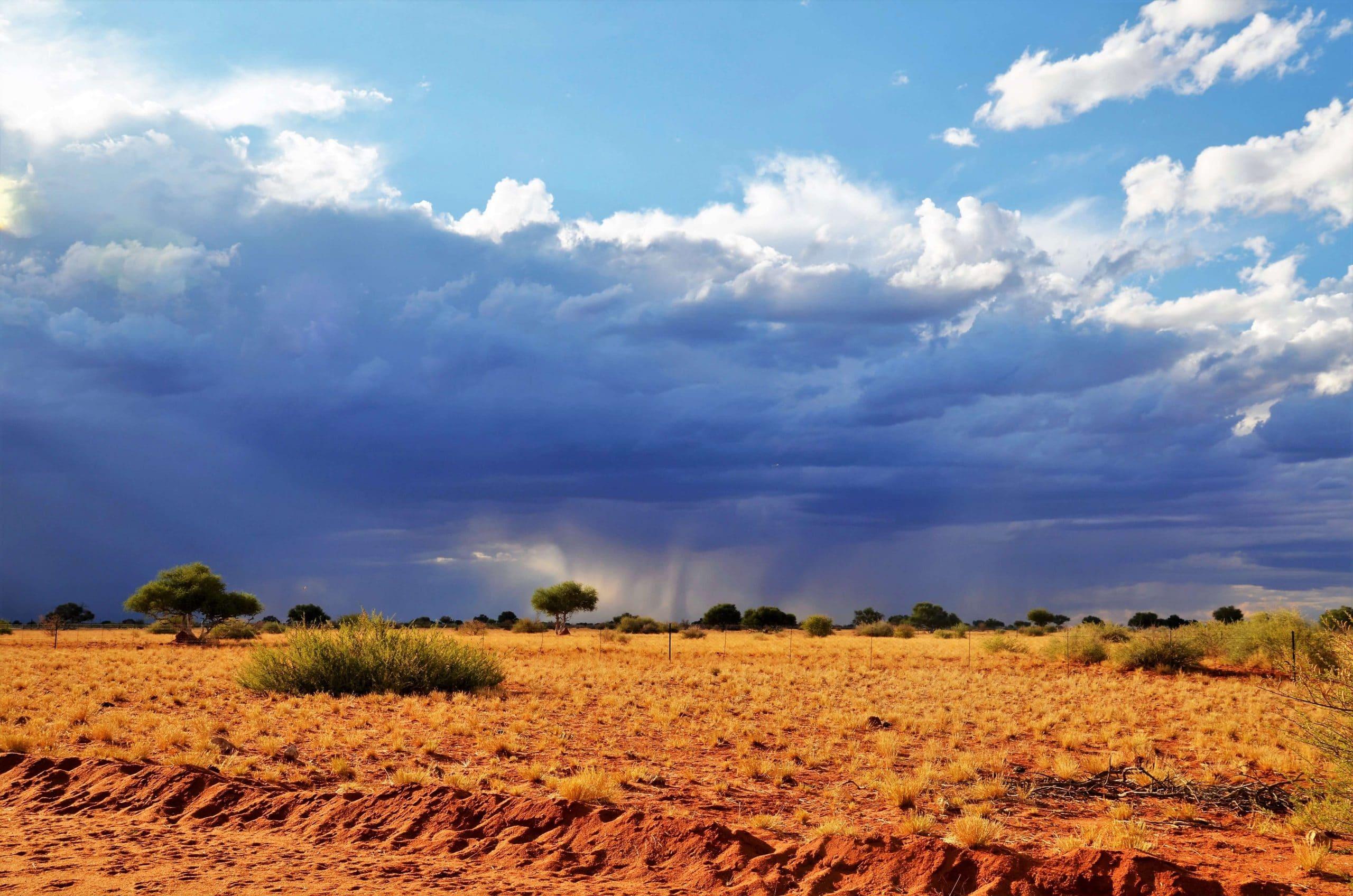 Abendstimmung in der Kalahari