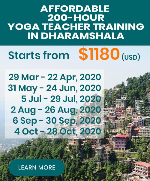 yoga teacher training dharamsala 2020