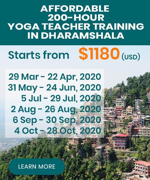yoga teacher training dharamsala 2020