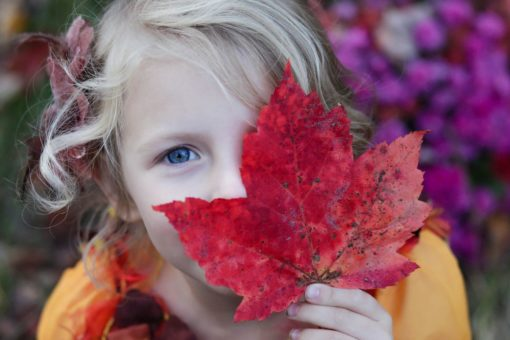 Outdoor Learning Activities that Celebrate Fall WinterKids2