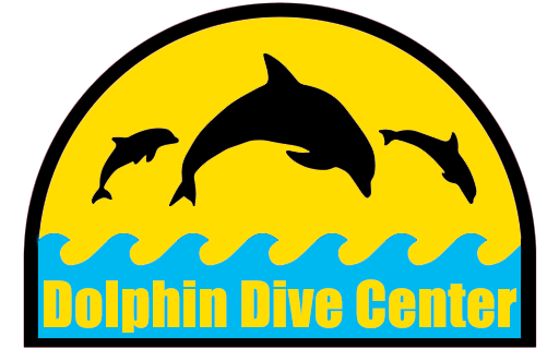 Dolphin Dive Center Logo