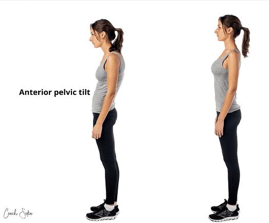 Fogyni a csípőből, A legjobb zsírégető kiegészítő nőstények számára - Csípőből lehet fogyni