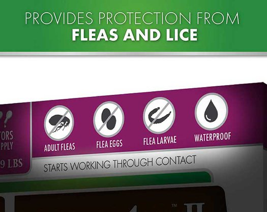 Protection from fleas and lice