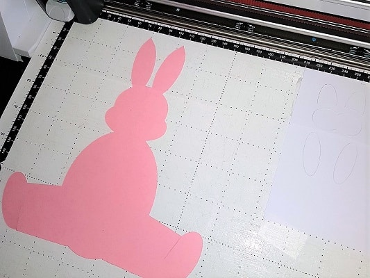 Bunny on mat