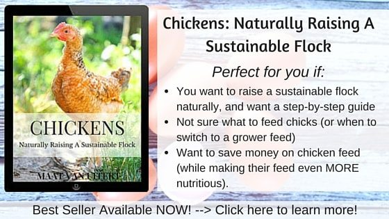 Chickens- Naturally Raising A Sustainable Flock AD (1)-min