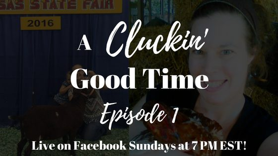 A Cluckin' Good Time: Episode 1 [Live Stream]