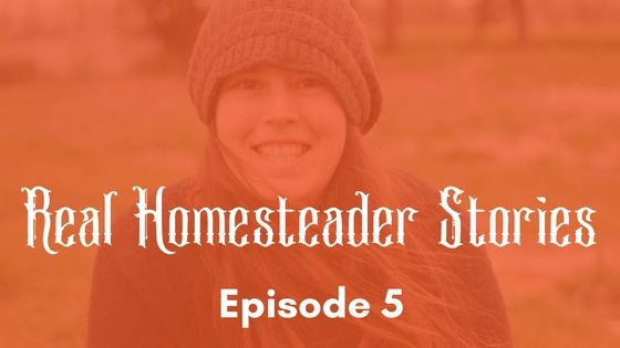 Real Homesteader Stories Episode 5!: The Ditch That'll Save Us All, Broody Hens, & Duckling Update! [Video]