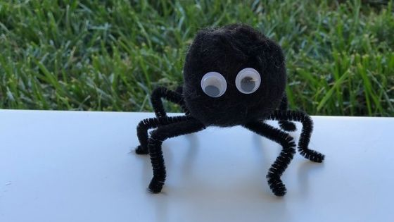 finished pom pom spider