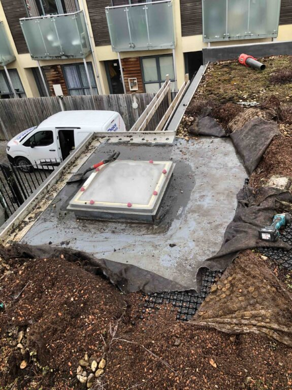 Leak in green roof London