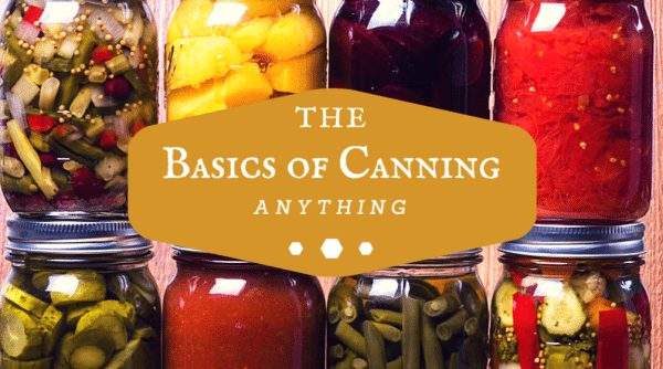 Canning Vegetables Step-By-Step Instructions