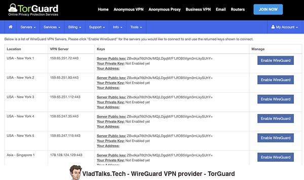 TorGuard - WireGuard VPN provider