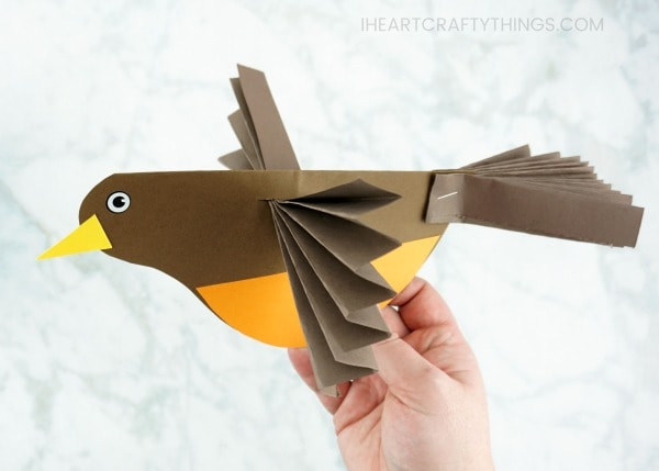 This colorful accordion fold paper bird craft is a perfect compliment to enjoying some bird watching in your neighborhood this spring and learning about birds. After making their own colorful bird craft, kids will enjoy flying them around all afternoon.