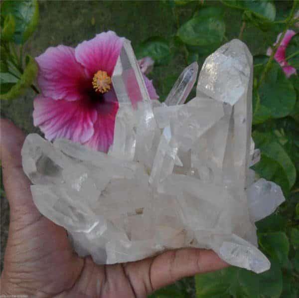Himalayan Self Healed Lemurian Star Seed Quartz Crystal