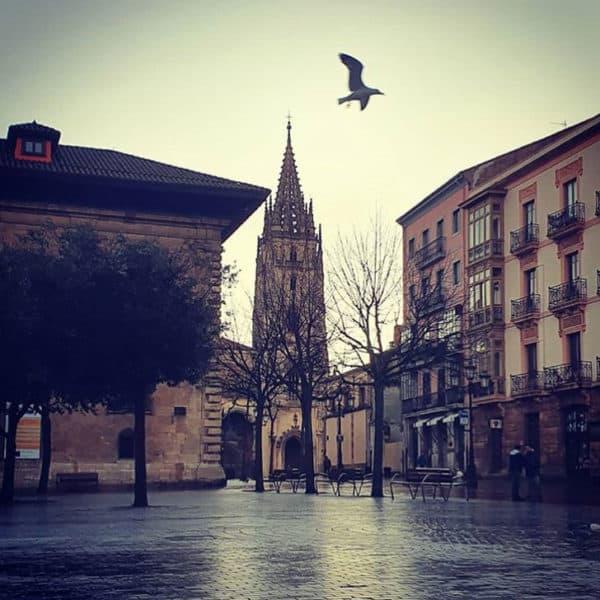 Excursiones y viajes Oviedo